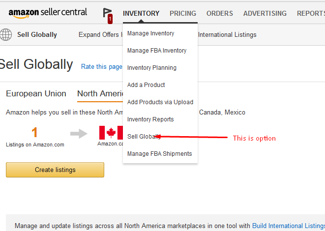 CAN I SELL IN BOTH AMAZON USA AND AMAZON CANADA?