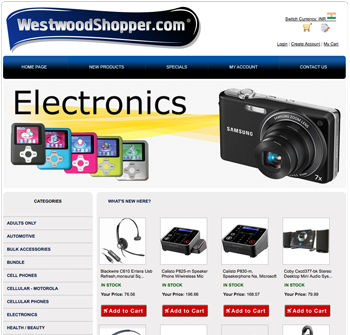 electronics website using drop shippers